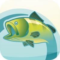 Bissanzeiger - App für Angler und Fischer
