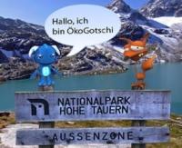 ÖkoGotschi - Startup will mittels Gamification informieren
