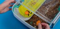 Livin Farms – Neues Crowdfunding-Projekt zur Mehlwurm-Zucht