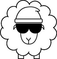 Scha(r)fe Wollprodukte aus dem eigenen Garten