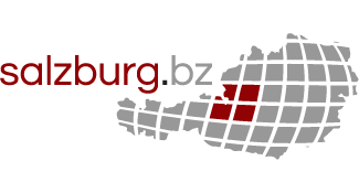 Logo Salzburg.bz